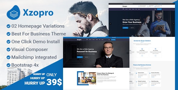 XZOPRO V1.0.0 – FINANCE AND BUSINESS CONSULTING WORDPRESS THEME