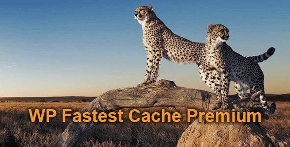 WP Fastest Cache Premium v1.5.4