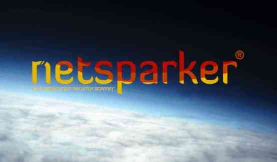 Netsparker Professional 4.8.0.13139 Free Download