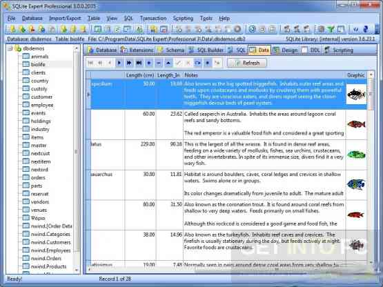 SQLite Expert Professional Edition Direct Link Download