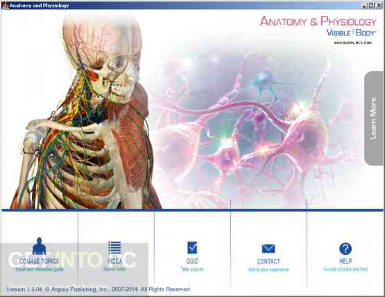 Visible Body Anatomy and Physiology Direct Link Download