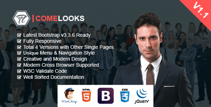 COMELOOKS V1.1 – MULTIPURPOSE BUSINESS HTML TEMPLATE