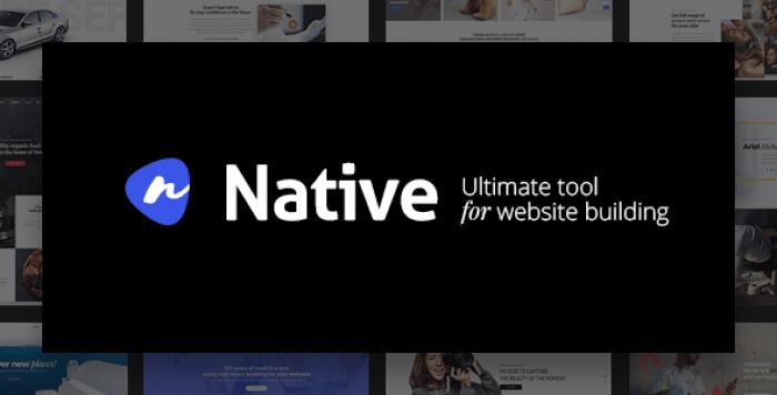NATIVE V1.3.7 – POWERFUL STARTUP DEVELOPMENT TOOL