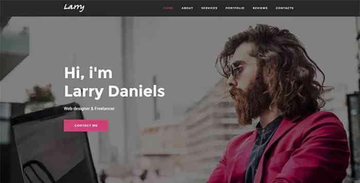 LARRY V1.0.2 – PERSONAL ONEPAGE WORDPRESS THEME