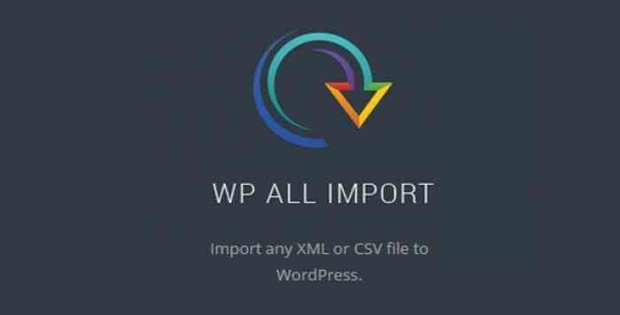 WP All Import Pro v4.5.6 beta2.9