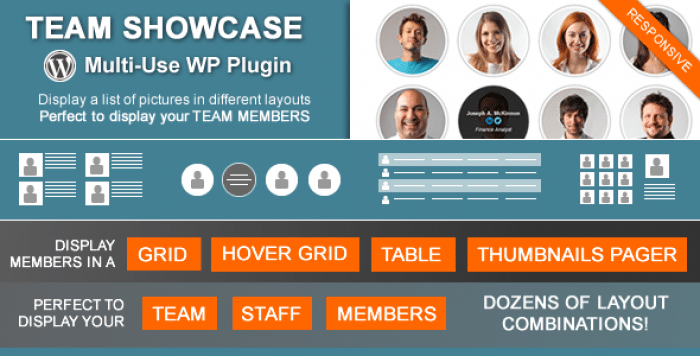Team Showcase v2.0.3 - Codecanyon WordPress Plugin