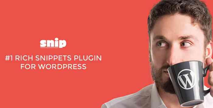 Rich Snippets WordPress Plugin v2.4.1