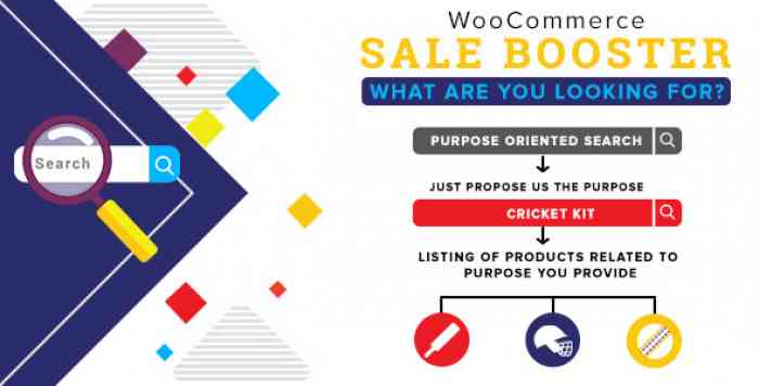 Woocommerce Sale Booster v1.0.3 - What are you looking for