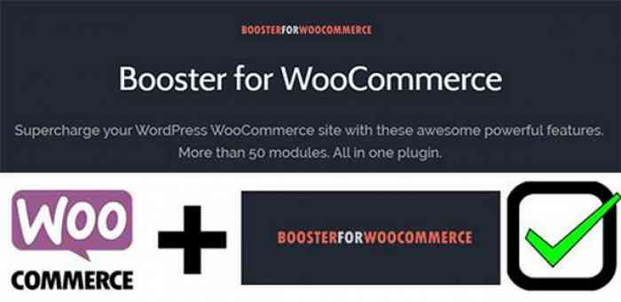 Booster Plus for WooCommerce v3.8.0