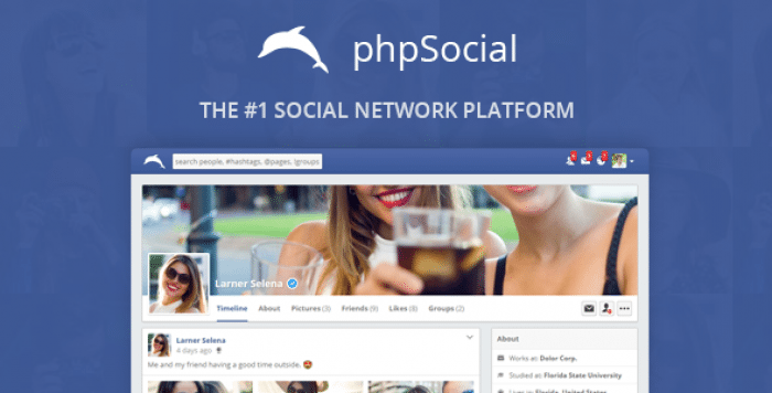 phpSocial v4.8.0 - Social Network Platform