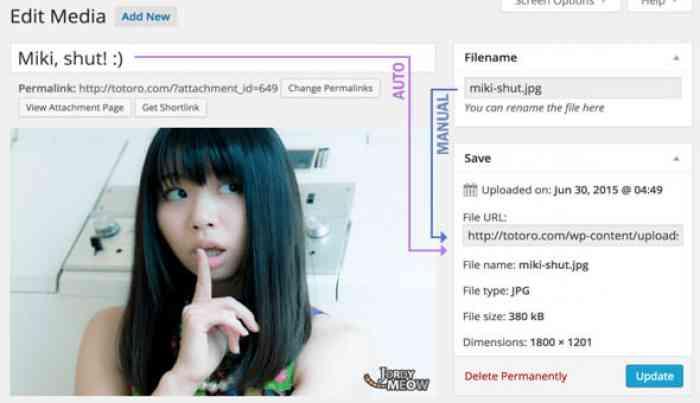 Media File Renamer Pro v4.2.4