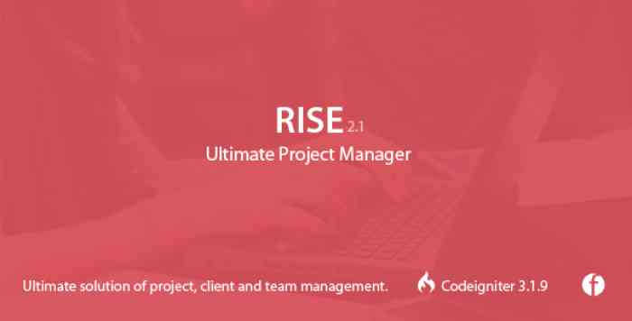 RISE v2.0.3 - Ultimate Project Manager - nulled