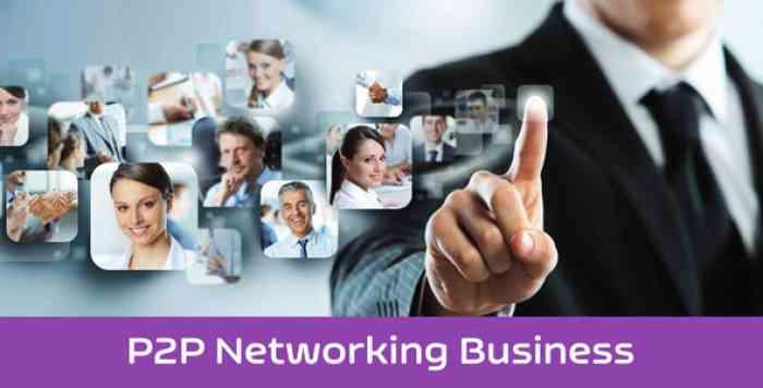 eNet – P2P Networking Business Platform