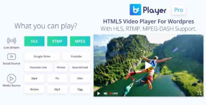 bzplayer Pro v1.8 - Live Streaming Player Plugin