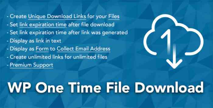 WP One Time File Download v2.0