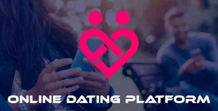 DateHook v1.0 - Online Dating Platform - nulled