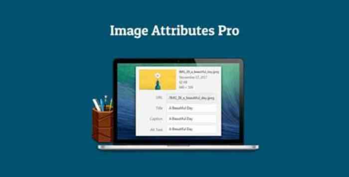 Auto Image Attributes Pro v1.3 – WordPress Plugin