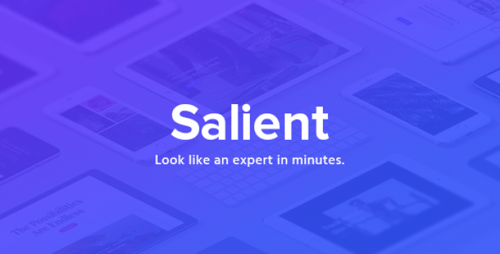 SALIENT V10.0.4 – RESPONSIVE MULTI-PURPOSE THEME