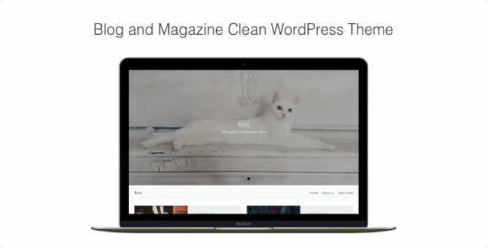 REAL V1.0.7 – BLOG AND MAGAZINE CLEAN WORDPRESS THEME