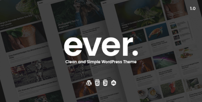 EVER V1.2.3 – CLEAN AND SIMPLE WORDPRESS THEME