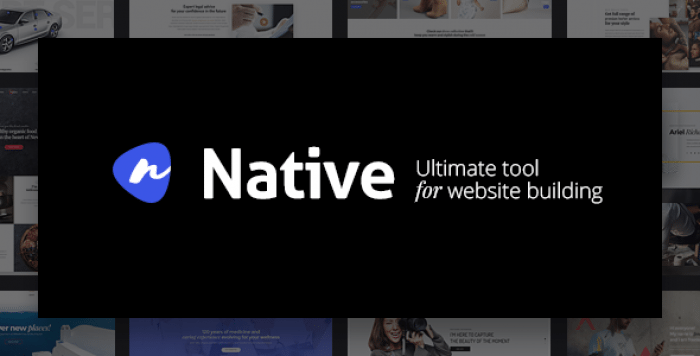 NATIVE V1.3.9 – POWERFUL STARTUP DEVELOPMENT TOOL