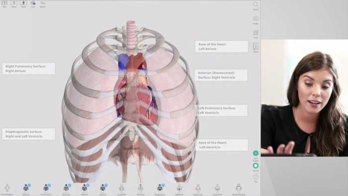 Download Complete Anatomy 2018 for Mac
