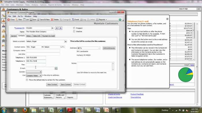 Peachtree 2010 Free Download