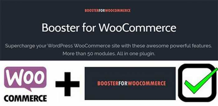 Booster Plus for WooCommerce v4.2.0